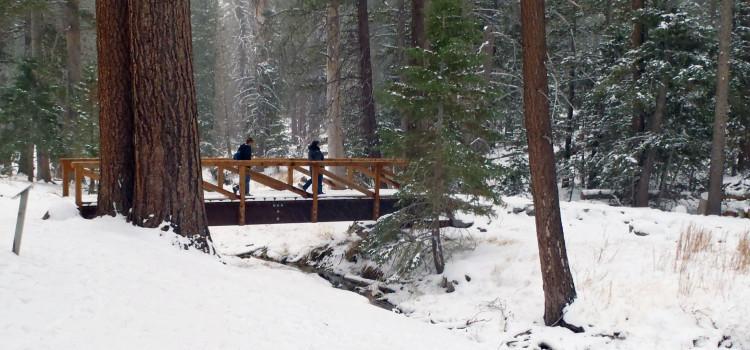 Southern California's Mt. San Jacinto State Park Reminds Me of Alaska — Sort Of